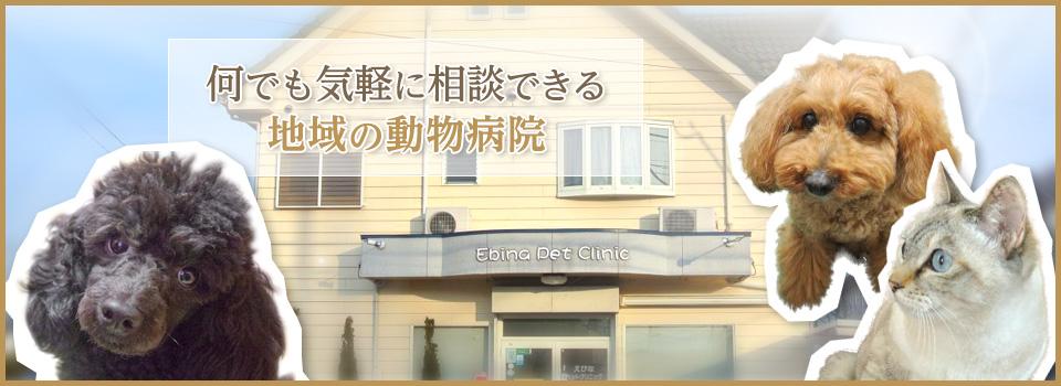 海老名市に有る動物病院です。「動物の気持ちを第一に!」をモットーに、個々の状況に合わせた診察・治療を心掛けています。往診・トリミング・ペットホテルも行っています。